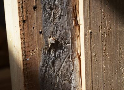 Old ceiling beams spruce